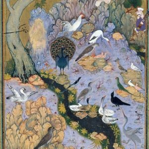 The Concourse of Birds by Habiballah of Sava